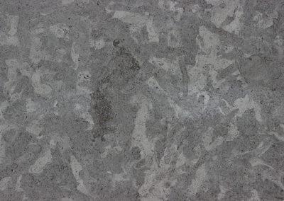 Silver-oaks